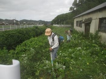 hozonkaikusakari2015.6.jpg