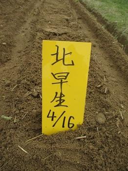 sobamaki2014-9.jpg